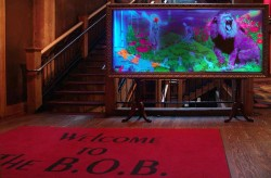 Oz @ BOB Entrance