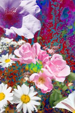 WildFlowers - Pink Roses