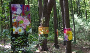 WildFlowers – An Art Show in the Forest